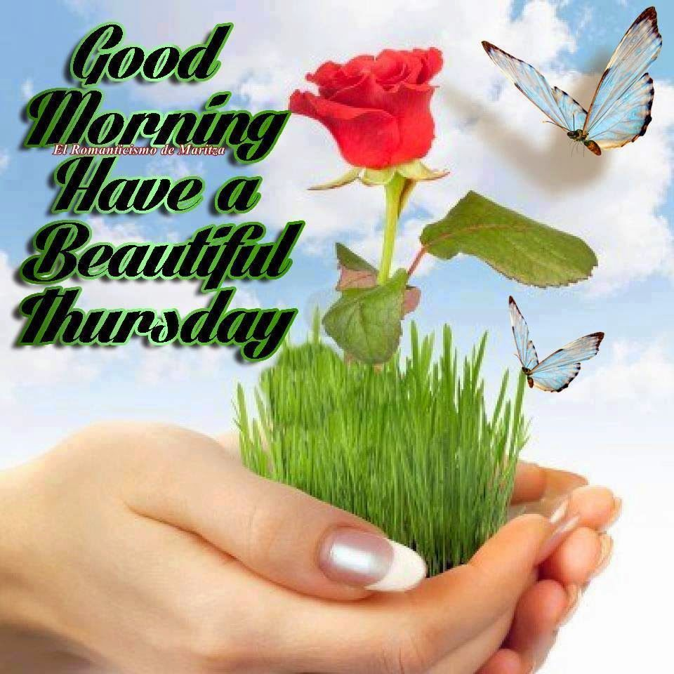 Good Morning Beautiful Thursday Images : Good morning have a beautiful thursday quote pictures