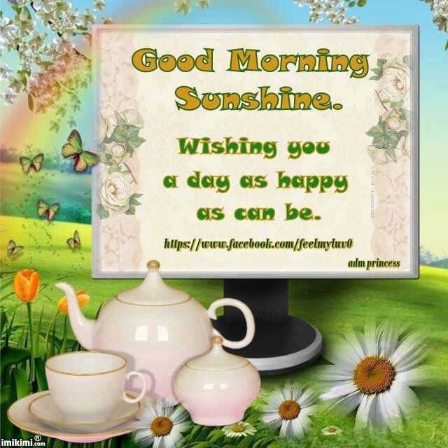 Good Morning Sunshine Facebook : Good morning sunshine wishing you a happy day pictures
