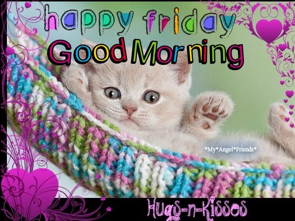 Cute Happy Friday Good Morning Quote With Cat Pictures