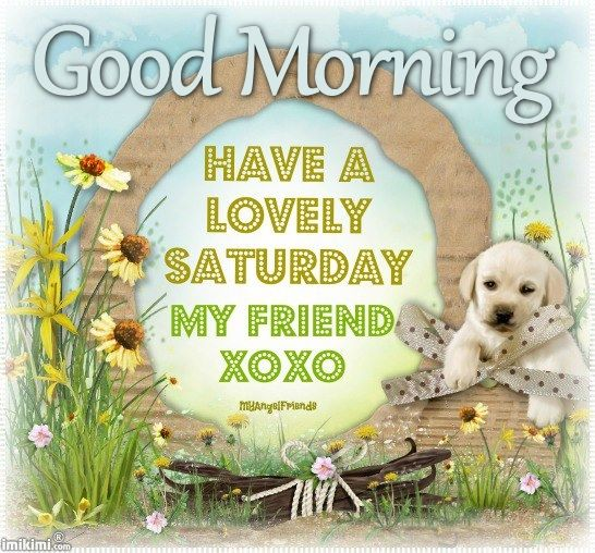 Good Morning Saturday Friends : Good morning have a lovely saturday pictures photos and