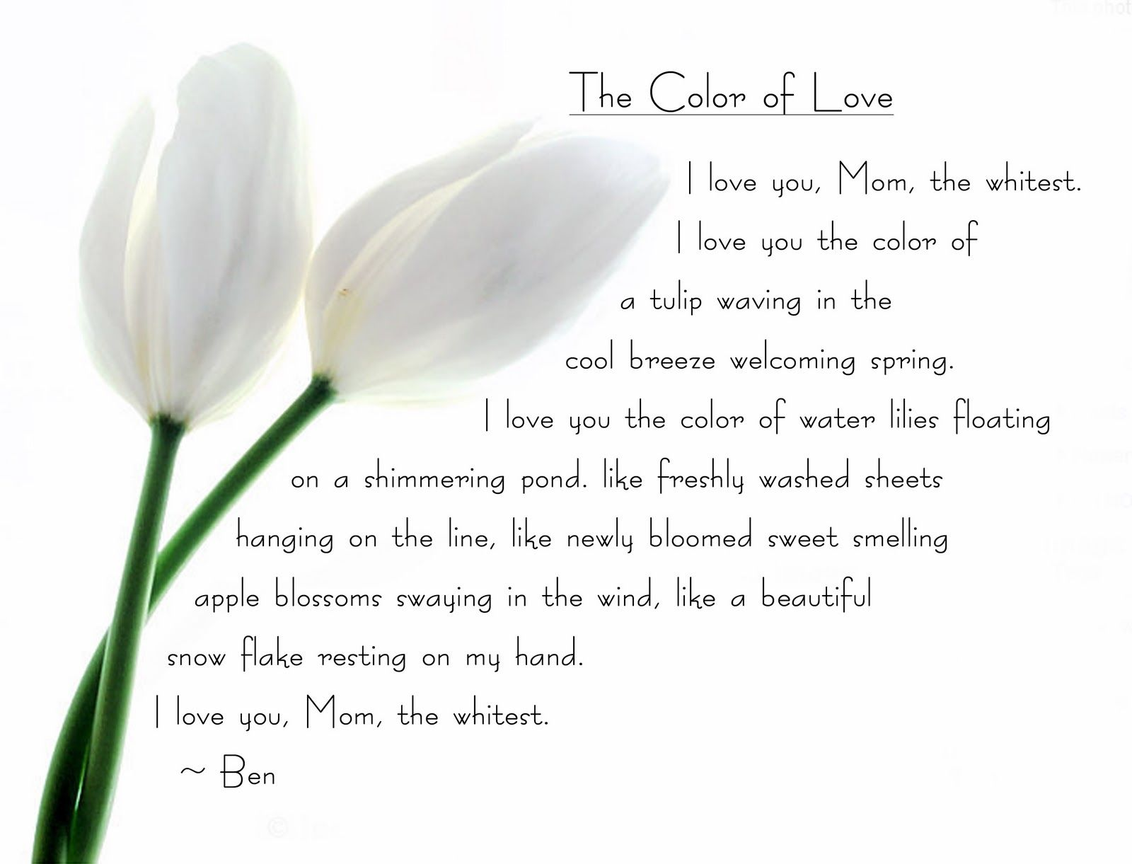 The Colours  of Love- Poems