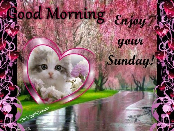 Good Morning Sunday Cute Images : Good morning enjoy your sunday cute quote pictures photos