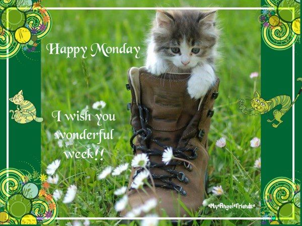Image result for wishing you a great week