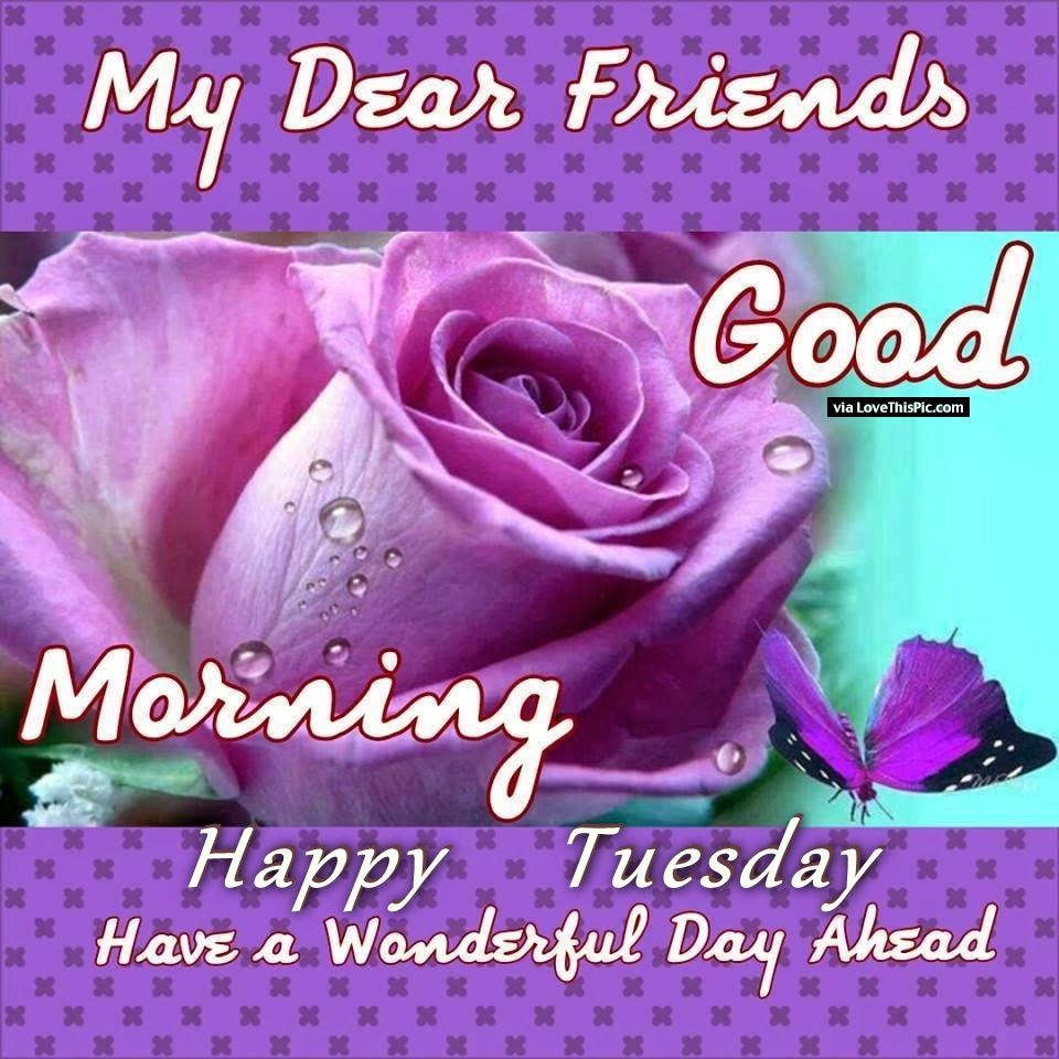 Good Morning My Beautiful Friend Quotes: My Dear Friends Goof Morning Happy Tuesday Pictures