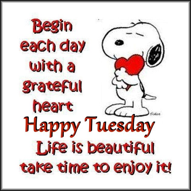 Snoopy Inspirational Tuesday Quote Pictures Photos and Images for