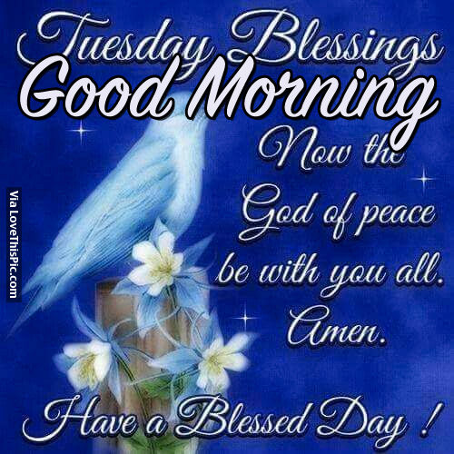 Good Morning Tuesday Blessing Images : Tuesday blessings good morning now the god of peace be