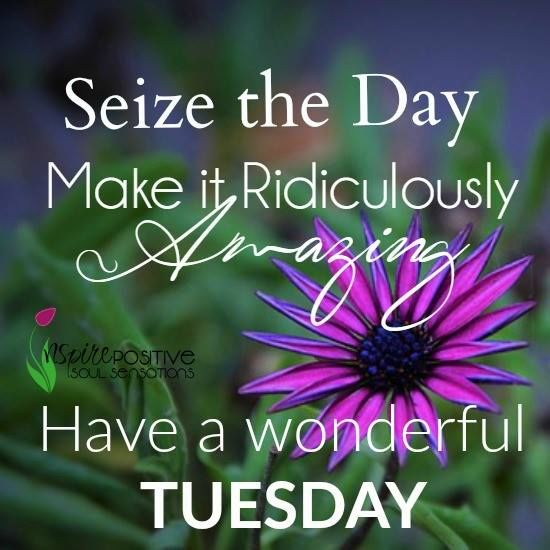 Make Day Amazing Happy Tuesday Photos
