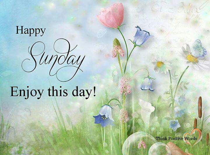 Happy Sunday, Enjoy This Day! Pictures, Photos, And Images
