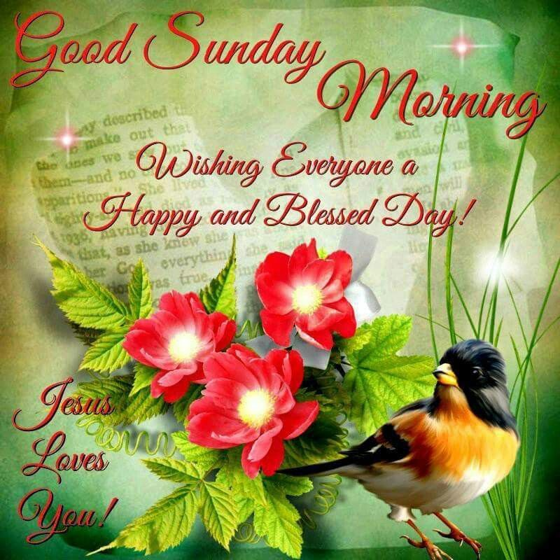Good Morning Sunday New : Good sunday morning pictures photos and images for