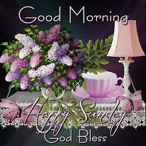 Good Morning Sunday God : Good morning happy sunday god bless pictures photos