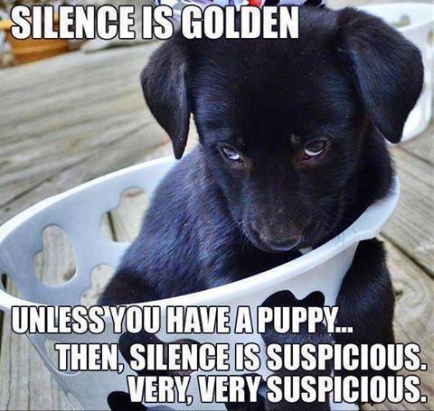 silence is golden unless