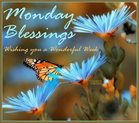 http://www.lovethispic.com/uploaded_images/258320-Monday-Blessings-Wishing-You-A-Wonderful-Week.jpg