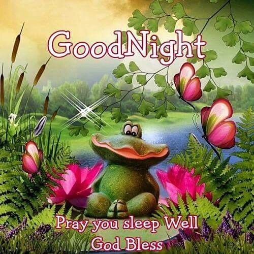 Goodnight Pray You Sleep Well God Bless Pictures Photos