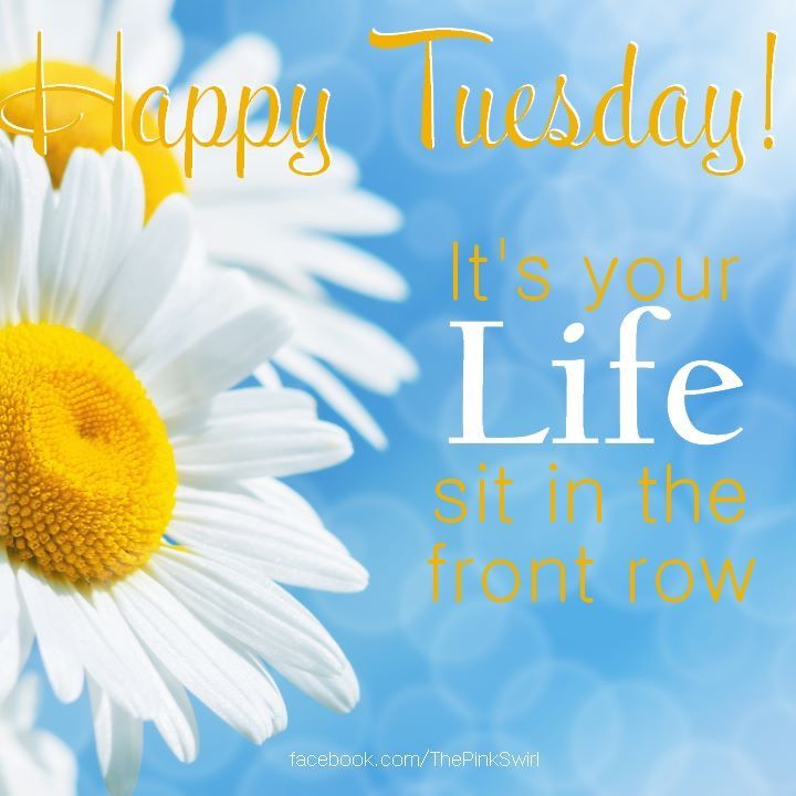 Happy tuesday its your life pictures photos and images for facebook