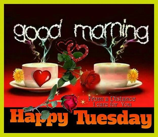 Good Morning My Love Happy Tuesday : Good morning happy tuesday pictures photos and images