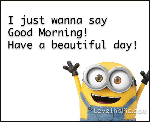 I Just Wanna Say Good Morning Minion Quotes Pictures ...