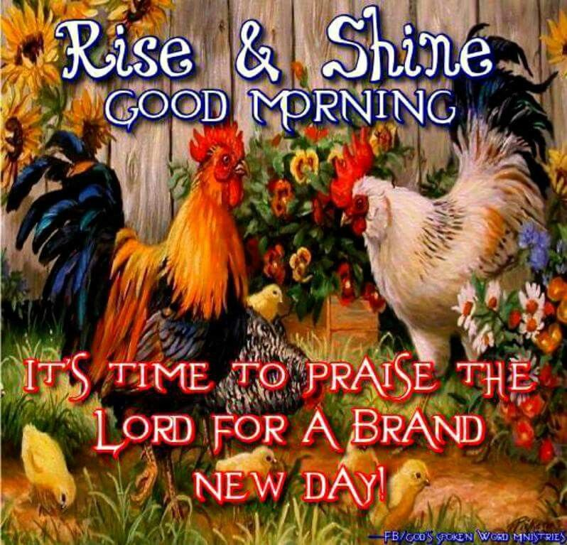 Good Morning Quotes Rise And Shine : Rise and shine good morning pictures photos images