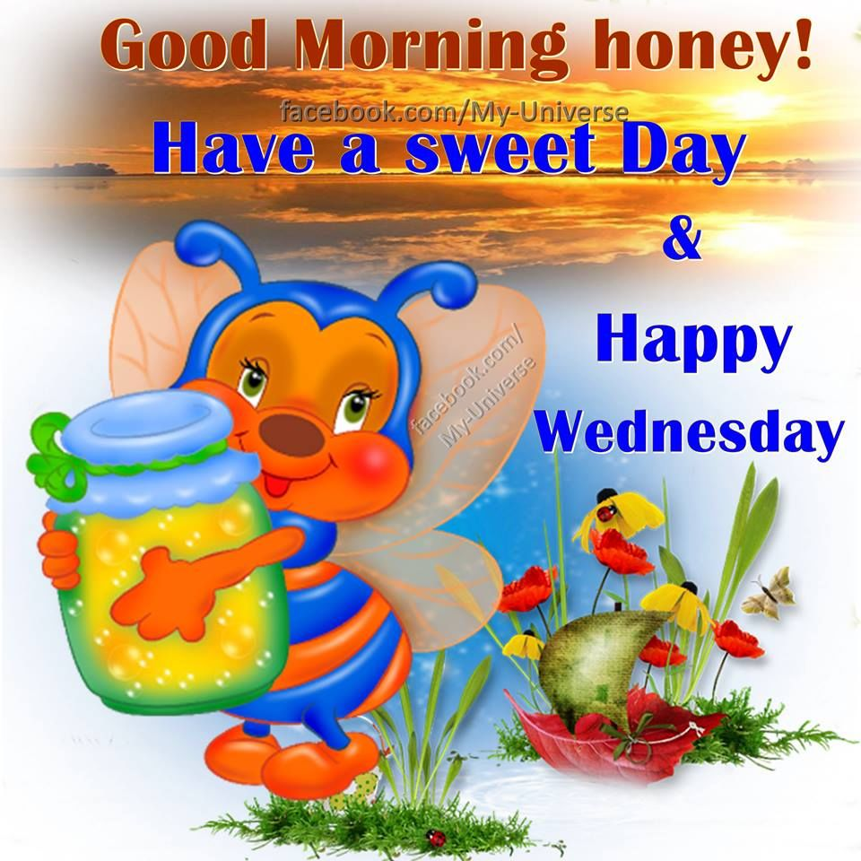 Beliebt Bevorzugt Good Morning Honey Happy Wednesday Pictures, Photos, and Images &YN_73