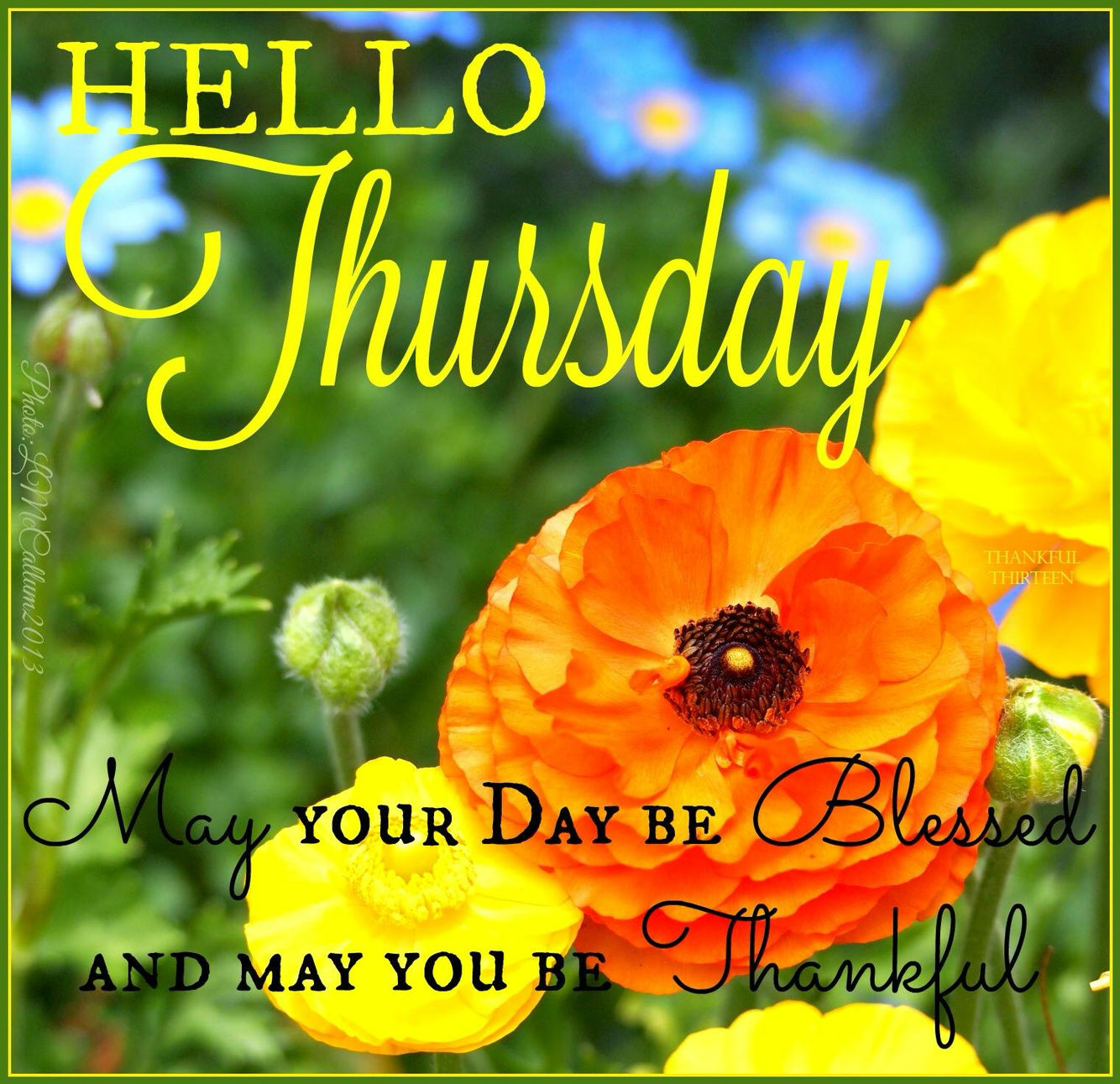 Hello Thursday May Your Day Be Blessed Pictures Photos And Images