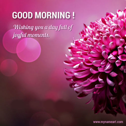 Image result for joyful morning tumblr gif
