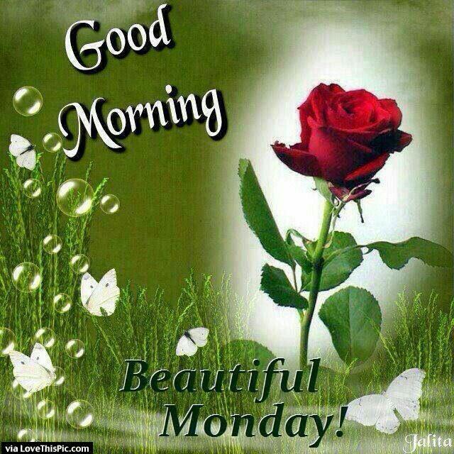 Good Morning Beautiful Monday
