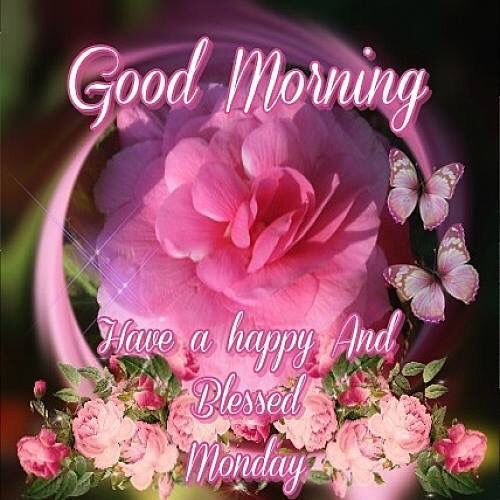 Good Monday Morning To Y'all Pictures, Photos, and Images ... |Monday Morning Graphics
