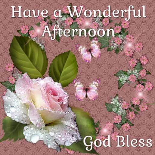 Good Afternoon Picture Quotes: Have A Wonderful Afternoon, God Bless Pictures, Photos