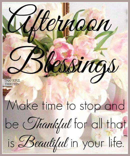 Good Afternoon Picture Quotes: Afternoon Blessings, Make Time To Stop And Be Thankful For
