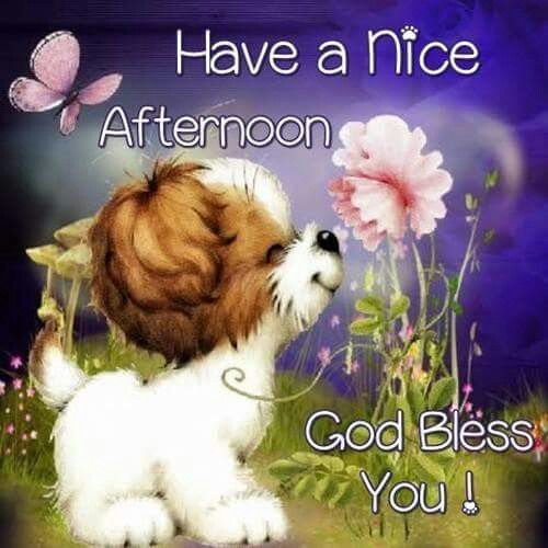 Image result for have a great afternoon