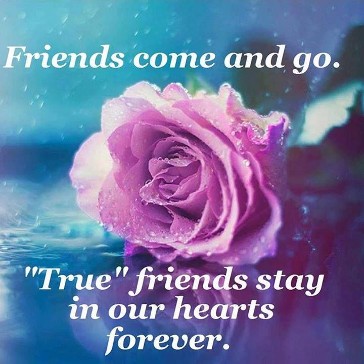 True Friends Stay In Our Hearts Pictures, Photos, and Images for ...