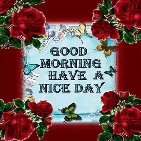 Good Morning Have A Nice Day Beautiful Quote