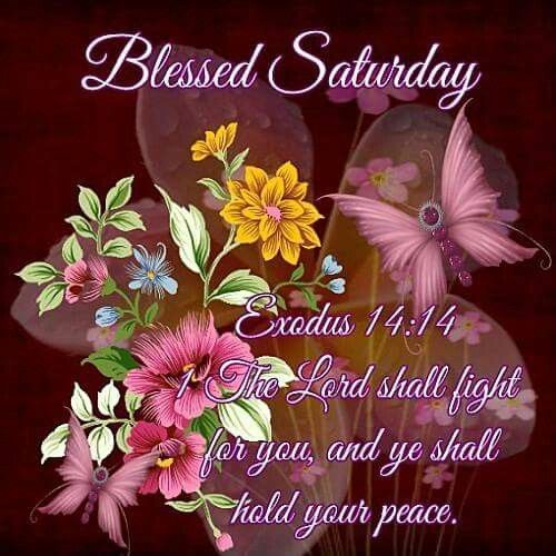 Blessed Saturday Pictures Photos And Images For Facebook