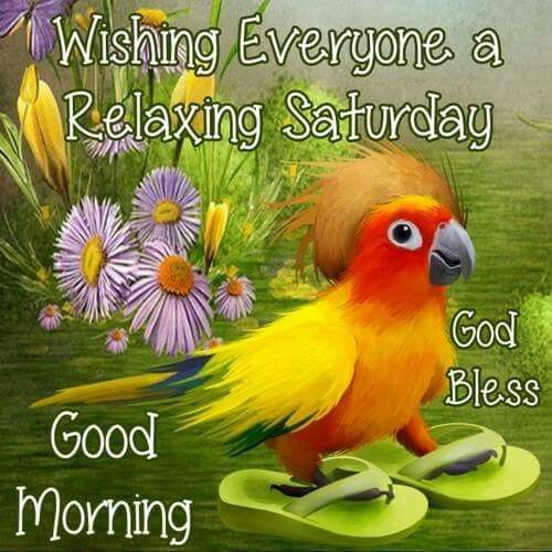 Good Morning Happy Saturday Everyone Image