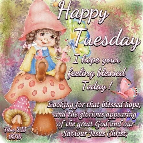 Happy Tuesday I Hope You Are Feeling Blessed Pictures ...
