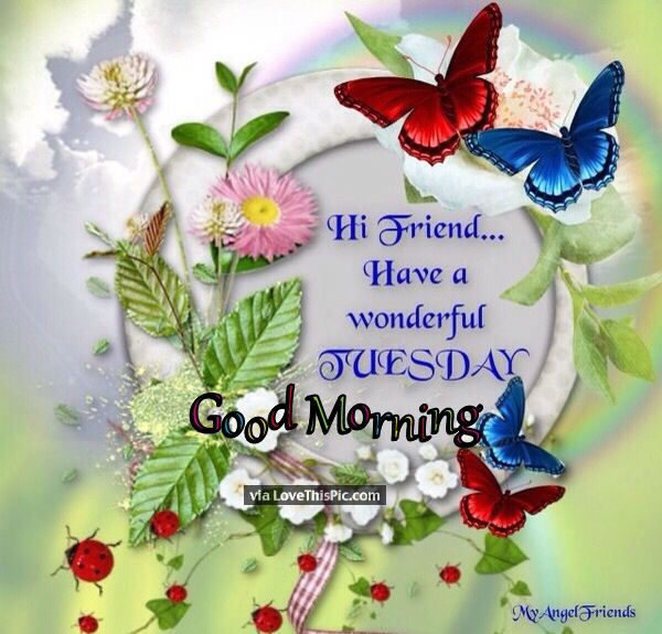 Hi Friends Have A Wonderful Tuesday Pictures, Photos, And
