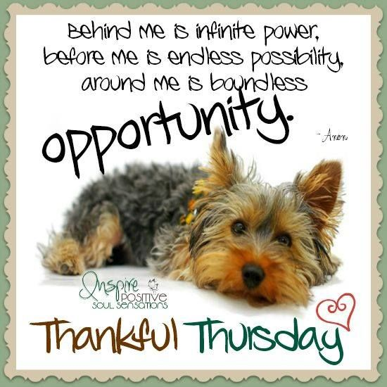 Thankful Thursday Quotes: Thankful Thursday Inspirational Quote Pictures, Photos