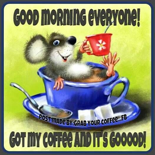 Good Morning Everyone Coffee : Good morning everyone got my coffee pictures photos and