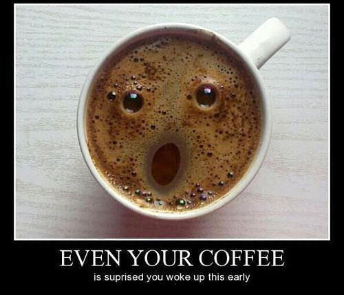 Funny Coffee Pictures Photos And Images For Facebook