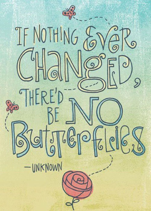 If Ever You Need A Reason To Get Out Of A Broken Down Car: If Nothing Ever Changed, There'd Be No Butterflies