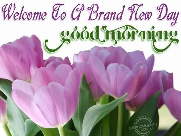 Brand New Day Quotes: Welcome To A Brand New Day Good Morning Pictures, Photos