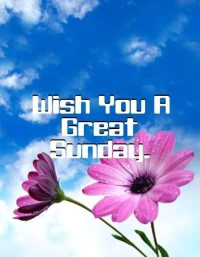 Afbeeldingsresultaat voor wishing you a great sunday
