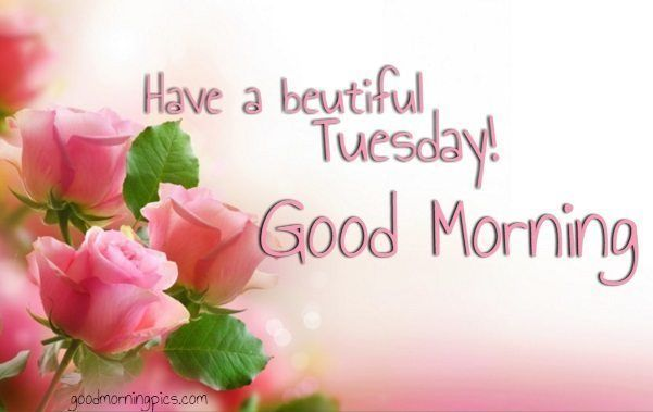 105 Best Images About Good Morning Quotes On Pinterest: Have A Beautiful Tuesday, Good Morning Pictures, Photos