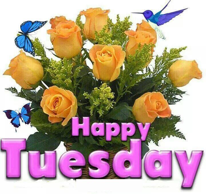 Happy Tuesday Flowers Pictures Photos And Images For