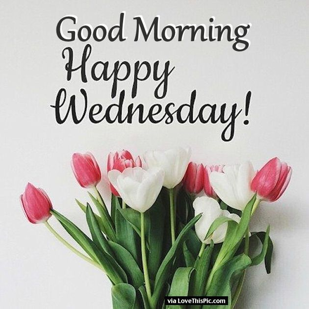 Good Morning Wednesday Images : Good morning happy wednesday images pixshark