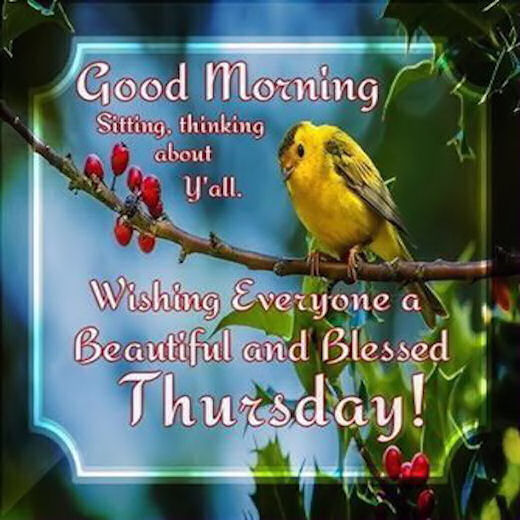 Good Morning Beautiful Thursday Images : Good morning wishing everyone a beautiful and blessed