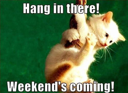 Hang in there weekend 39 s coming pictures photos and for New kid movies coming out this weekend