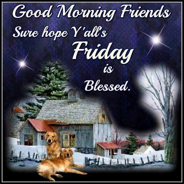 Good morning friends friday is blessed pictures photos and images good morning friends friday is blessed m4hsunfo