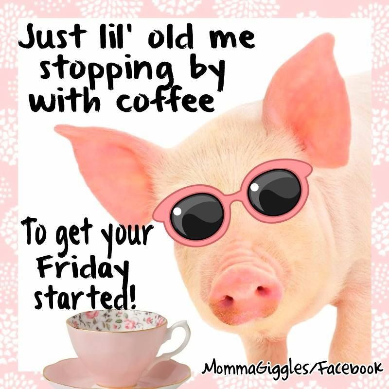 Funny Friday Morning Quotes: Just Stopping By With Coffee To Get Your Friday Started