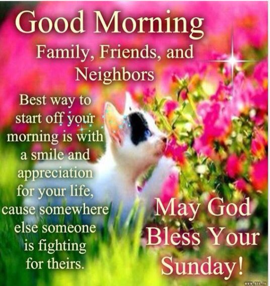 Good Morning Family And Friends Quotes : Good morning sunday friends family and neighbors pictures