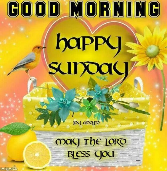 Good Morning Happy Sunday May The Lord Bless You Pictures